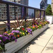 Arredare il terrazzo con vasi e piante