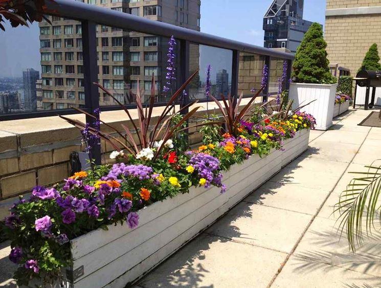Come arredare terrazzo arredare casa arredamento balcone - Arredare terrazzo con piante ...