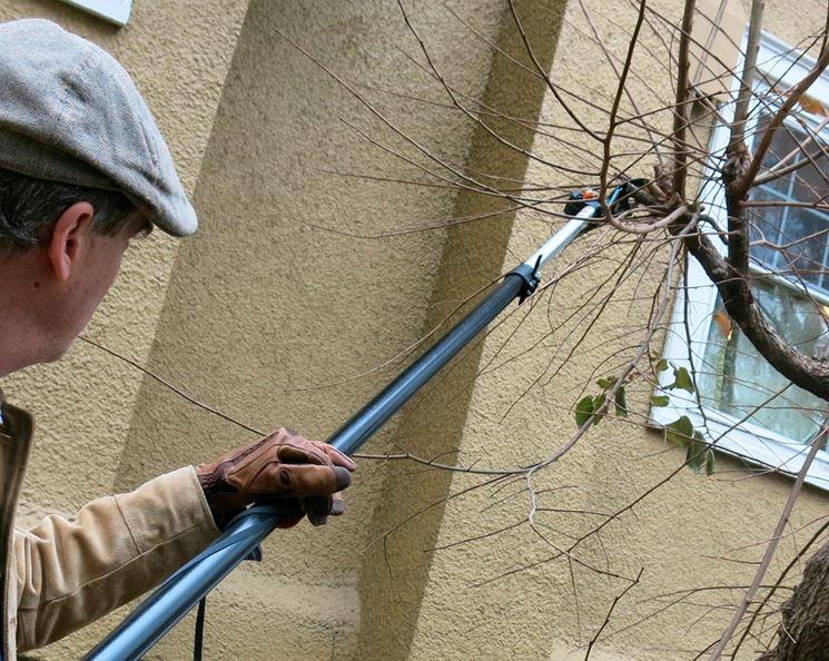 Giardiniere con forbici elettriche