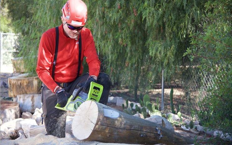 Uomo sega tronco