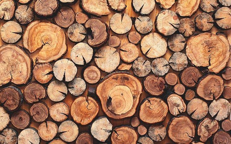 Jim's wood