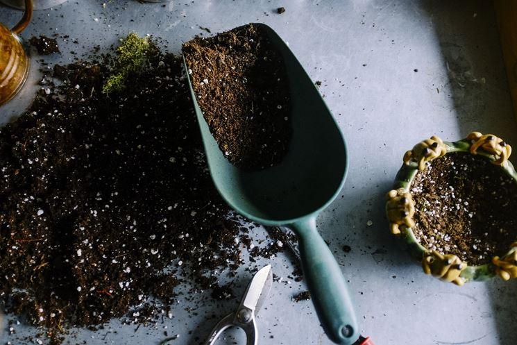 spatola da giardino