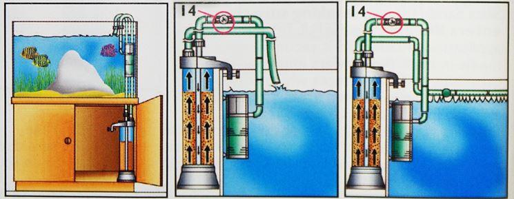 Sistema di filtraggio per acquari