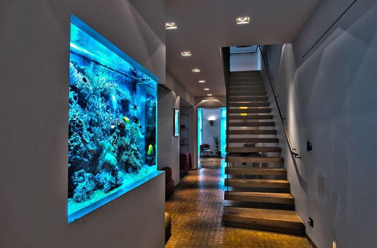 Esempio di acquario moderno