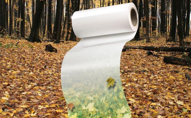Plastica e ambiente