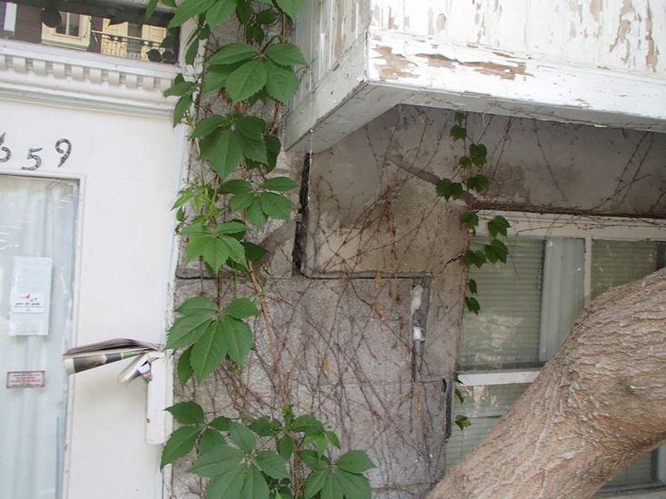 Crepe presenti nelle pareti