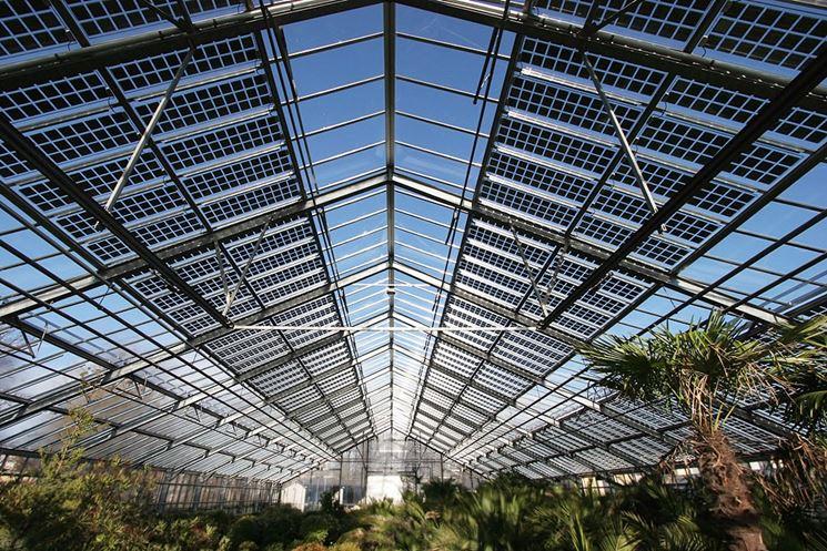 Interno serra fotovoltaica