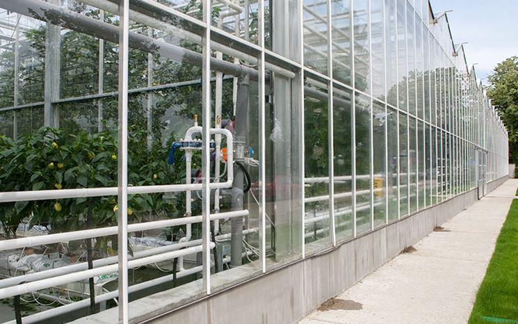 Serra fotovoltaica tecnologicamente avanzata
