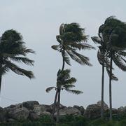 La forza del vento