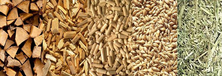 Vari tipi di biomasse
