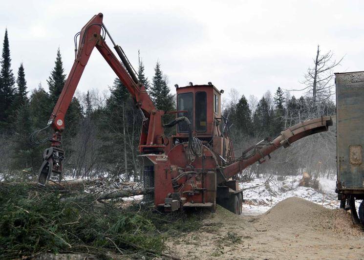 Realizzazione di biomasse da scarti di lavorazioni forestali