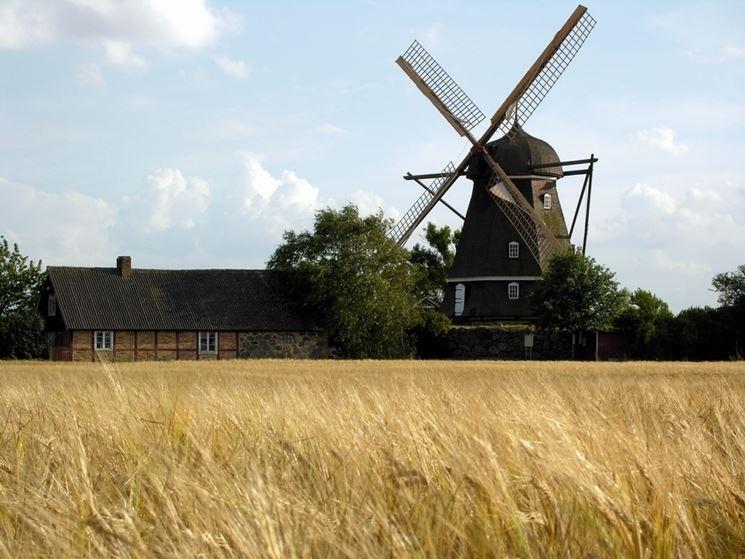 Antico mulino a vento