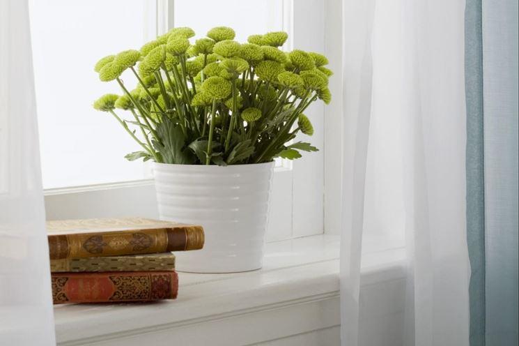 Qualit aria risparmio casa valutare e migliorare la - Aria secca in casa ...