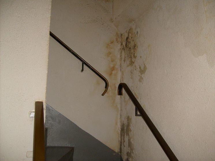 Umidità formatasi sulle pareti