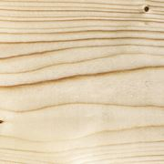 Texture legno abete