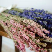 Mazzi di fiori secchi