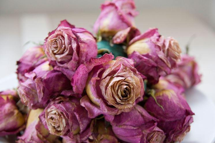 Creare fiori secchi