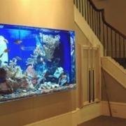 costruire un acquario