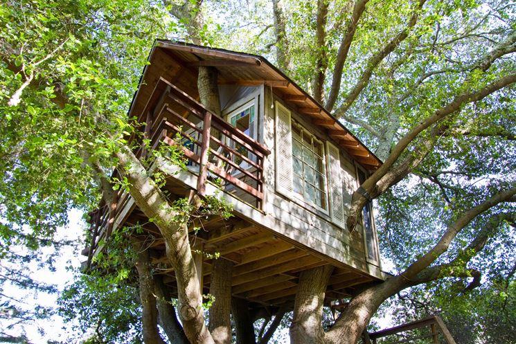 Casa sull'albero con rami