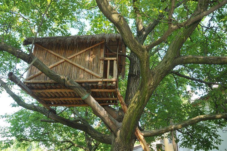 Casa sull'albero con canne