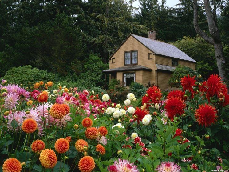 Estremamente Vasi da giardino - Vasi per piante - Tipologie di vasi per esterno EC92