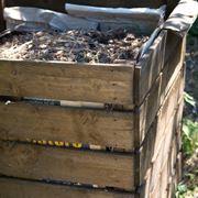 Compostiera pallet