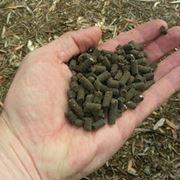 concime organico pellettato