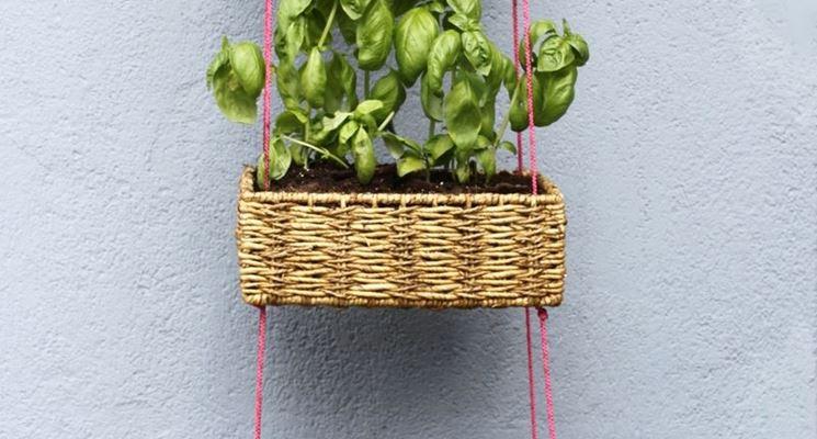 Originali contenitori per piante