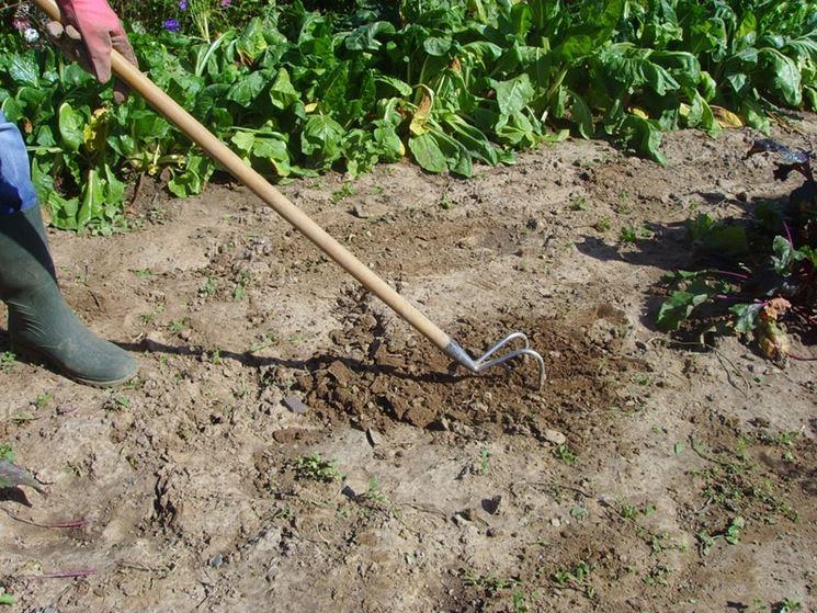 le lavorazioni del terreno sono d'aiuto