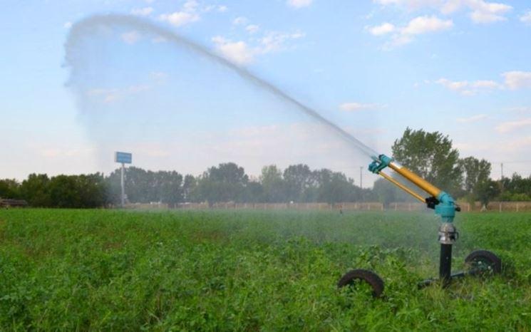 Irrigatore