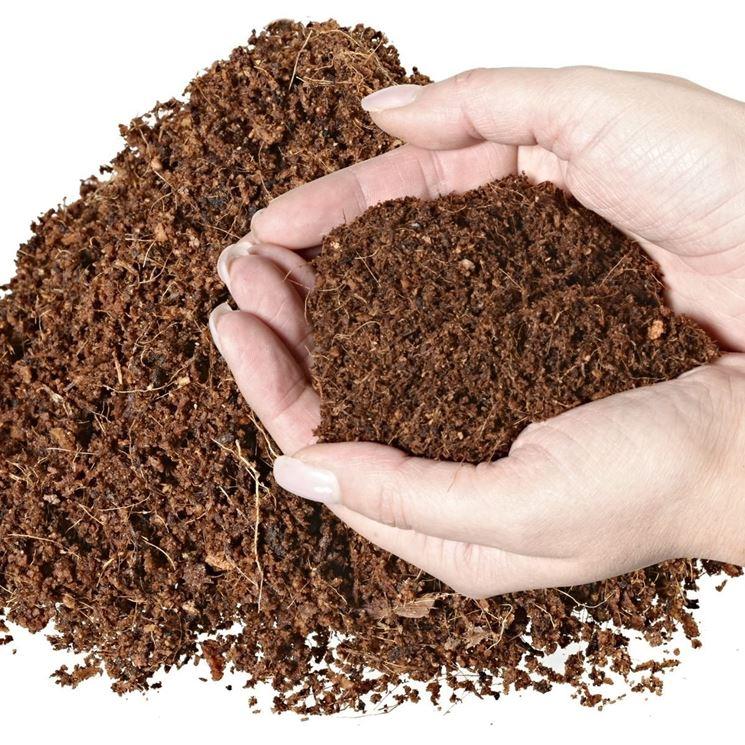 Produzione e trattamento dell'humus per substrato