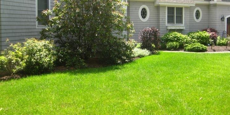 Esempio di giardino domestico con erba