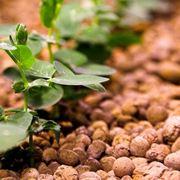 Cava e produzione di argilla espansa