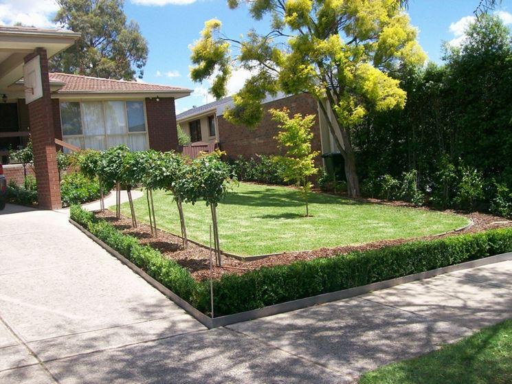 Vialetto giardino con piante