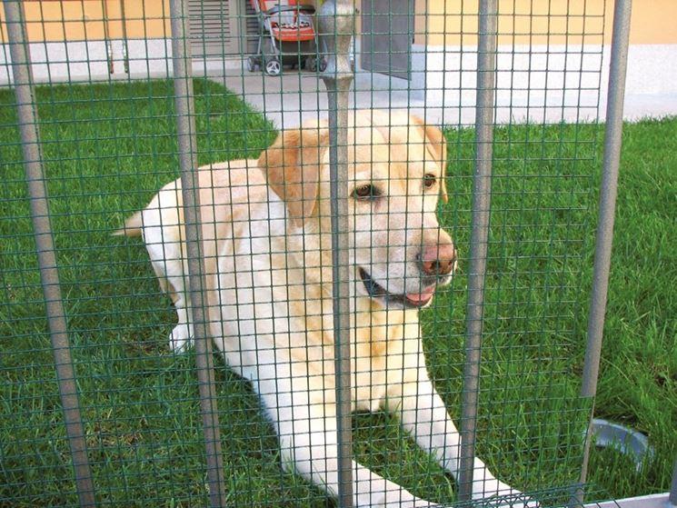 Recinzione Per Cani Giardino.Rete Per Recinzione Recinzioni Giardino Tipologie Di Reti Per