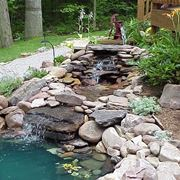 Giardino piccola cascata