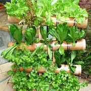 Progettazione giardini stili di giardini come - Giardini verticali interni ...