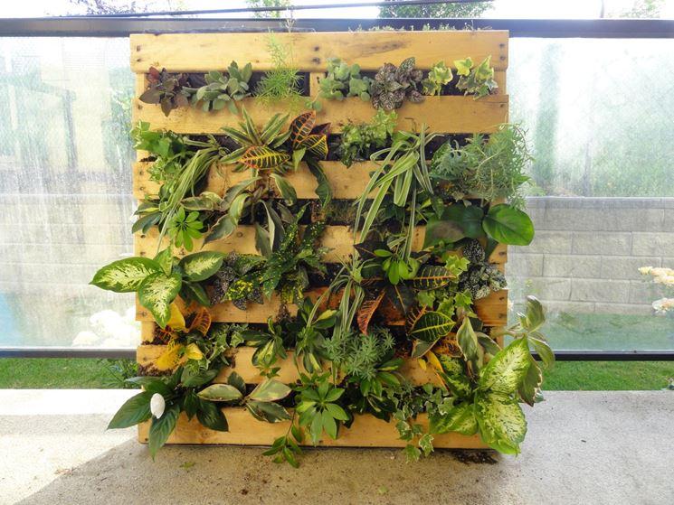 Giardino verticale realizzato con pallet
