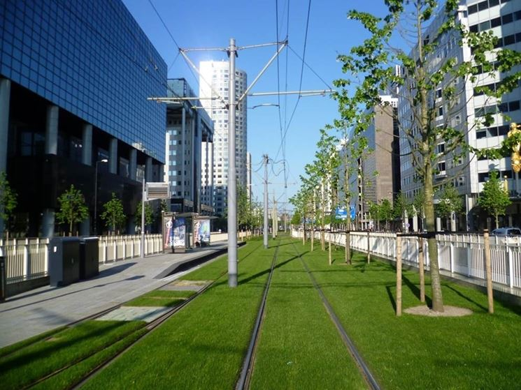Area urbana green