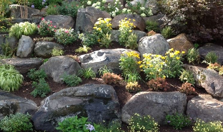 Il giardino roccioso stili di giardini caratteristiche - Il giardino roccioso ...