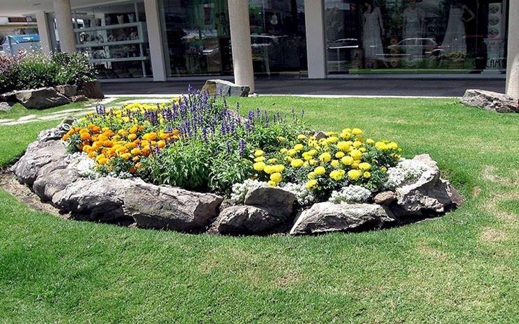 Giardino roccioso con fiori
