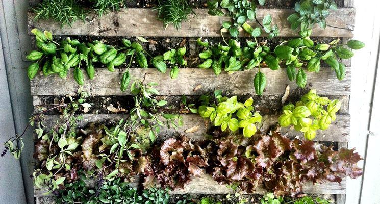 Piccolo giardino verticale