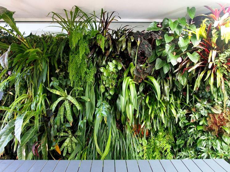 Pareti verdi - Stili di giardini - Giardini verticali