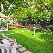 Giardino meditteraneo di lusso con limoni