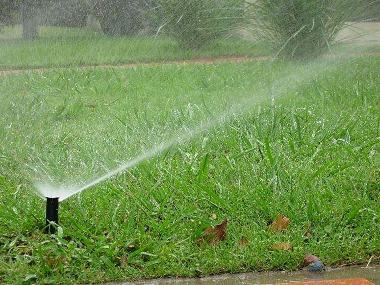 Esempio di irrigazione a pioggia