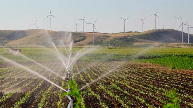 Particolare di impianto d'irrigazione