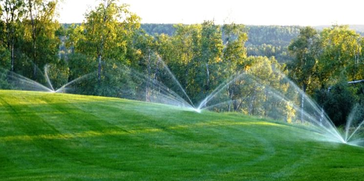 Esempio di campo con irrigazione interrata.