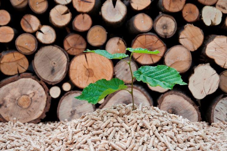 Il pellet è un combustibile naturale ed ecologico