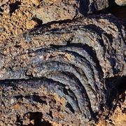 Rocce basaltiche