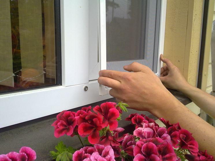 Zanzariera per finestra